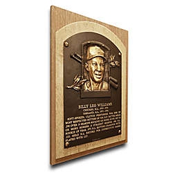 MLB Chicago Cubs Billy Williams That's My Ticket Hall of Fame Canvas Plaque