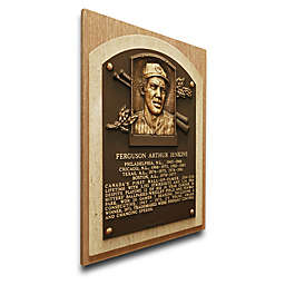 MLB Chicago Cubs Fergie Jenkins That's My Ticket Hall of Fame Canvas Plaque