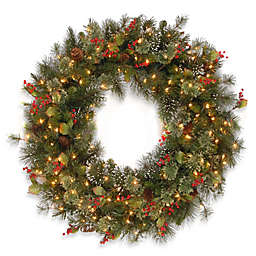 National Tree Company Wintry Pine Wreaths