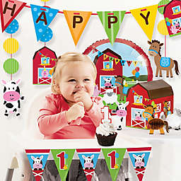 Creative Converting™ 11-Piece Farmhouse Fun 1st Birthday Party Décor Kit