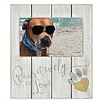 Coastal  Pawsitively in Love  4-Inch x 6-Inch Wood Picture Frame Collection