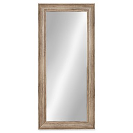 Kate and Laurel Macon 16-Inch x 36-Inch Panel Wall Mirror