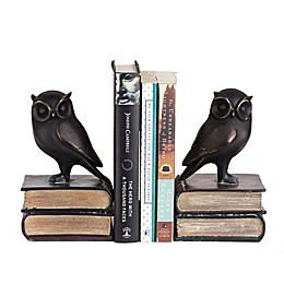 Danya B. Owl on Books Bookend Set in Bronze