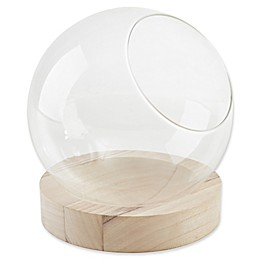 Danya B. Glass Orb Terrarium on Wooden Stand