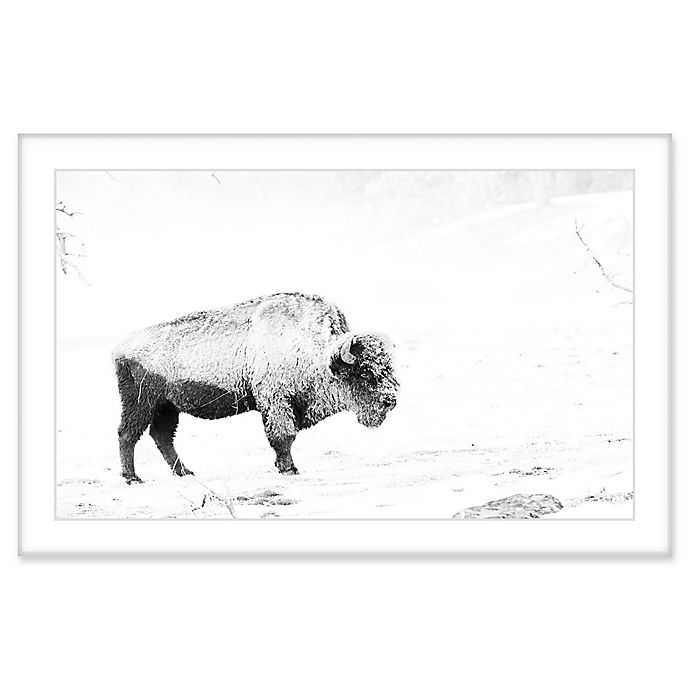 Alternate image 1 for Marmont Hill Grazing Bison 24-Inch x 16-Inch Framed Wall Art