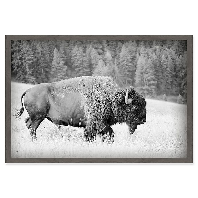 Alternate image 1 for Marmont Hill Buffalo Grazing 36-Inch x 24-Inch Framed Canvas Wall Art