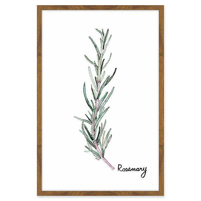 Alternate image 1 for Marmont Hill Herb Rosemary 24-Inch x 36-Inch Framed Wall Art