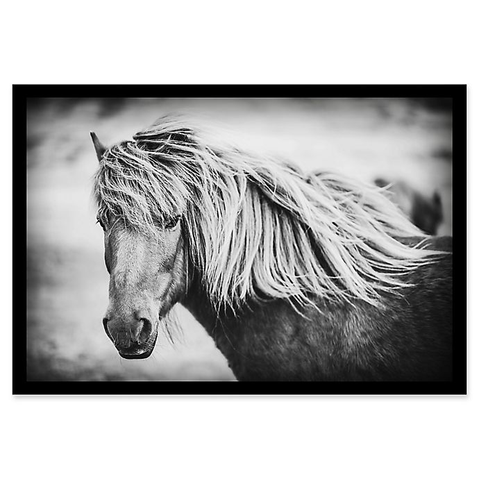 Alternate image 1 for Marmont Hill Beautiful Mane 24-Inch x 16-Inch Shadow Box Canvas Wall Art