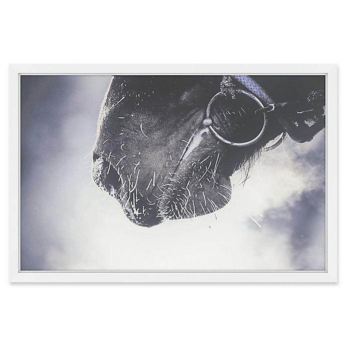 Alternate image 1 for Marmont Hill White Whiskers 24-Inch x 16-Inch Framed Wall Art