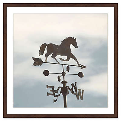 Marmont Hill Weathervane 40-Inch Square Framed Wall Art