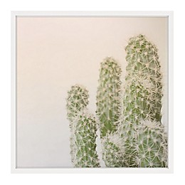 Marmont Hill Fuzzy Cactus 24-Inch x 24-Inch Framed Wall Art