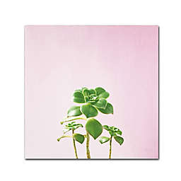 Marmont Hill Succulent Simple IX14-Inch Square Canvas Wall Art