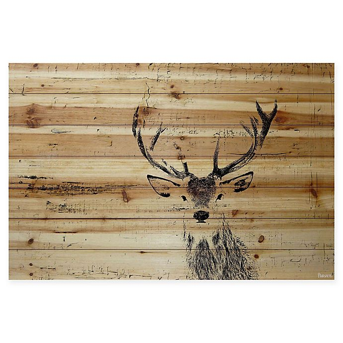 Alternate image 1 for Parvez Taj Inquisitive Deer 24-Inch x 16-Inch Pinewood Wall Art