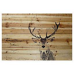 Parvez Taj Inquisitive Deer Pinewood Wall Art