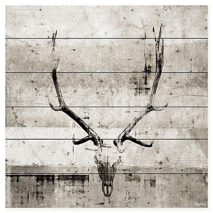 Alternate image 1 for Parvez Taj Long Antlers 18-Inch Square Wood Wall Art