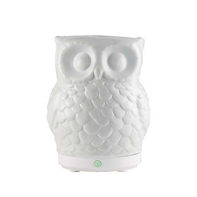 SpaRoom® Owl USB Ultrasonic Essential Oil Diffuser in White