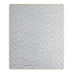 Zandy Indoor/Outdoor Throw Blanket in Grey Neon