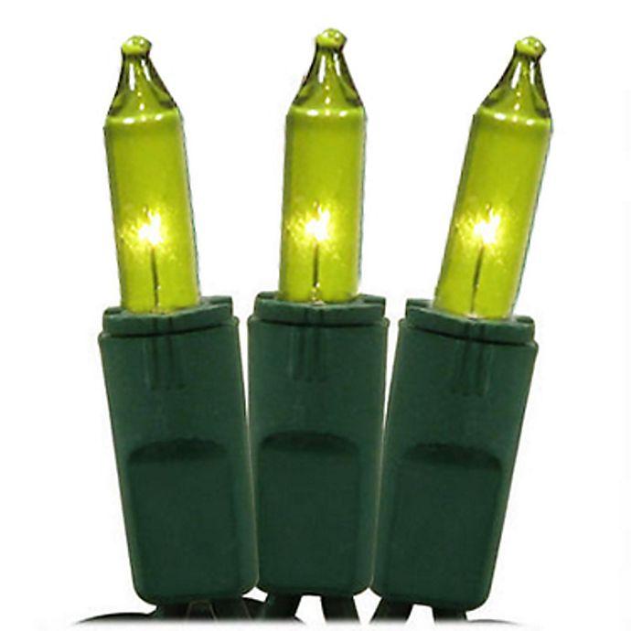 Alternate image 1 for Northlight® x 25-Foot 50-Light Incandescent Mini String Lights in Green/Green