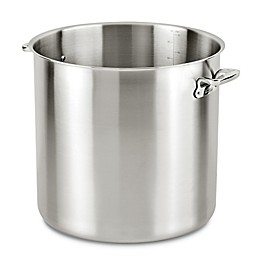 All-Clad Pro Stainless Steel 10 qt. Stock Pot