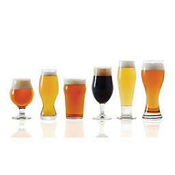 Dailyware™ 6-Piece Assorted Craft Brew Beer Glass Set