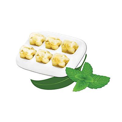 MyPurMist® 4-Pack Eucalyptus & Peppermint ScentPads