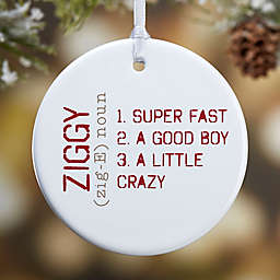 Definition of Pet 1-Sided Glossy Christmas Ornament
