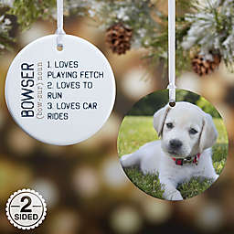 Definition of Pet Christmas Ornament Collection
