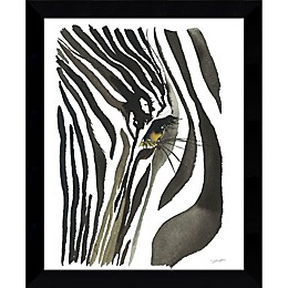 Amanti Art Zebra Eye 9-Inch x 11-Inch Framed Wall Art