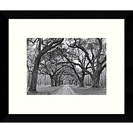 Amanti Art Oak Arches 10.88-Inch x 8.88-Inch Framed Wall Art