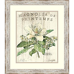 Amanti Magnolia de Printemps 19.5-Inch x 22.5-Inch Framed Wall Art