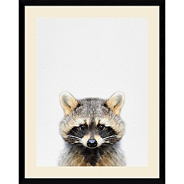 Amanti Raccoon 23-Inch x 29-Inch Framed Wall Art