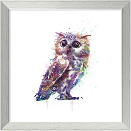 Amanti Art Owl 18-Inch Square Framed Wall Art
