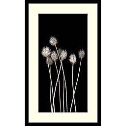 Amanti Art Dried Up 30-Inch x 18-Inch Framed Wall Art