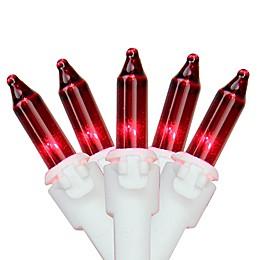 Northlight 11.25-Foot 50-Light Mini String Lights in Red/White