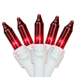 Northlight 11.25-Foot 50-Light Mini String Lights in Red/White