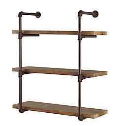 Danya B.™ 3-Tier Industrial Pipe Wall Shelf