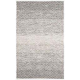 Safavieh Montauk 4' x 6' Phoenix Rug in Light Grey