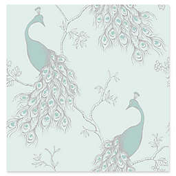 Brewster Home Fashions Phasia Peacock Wallpaper