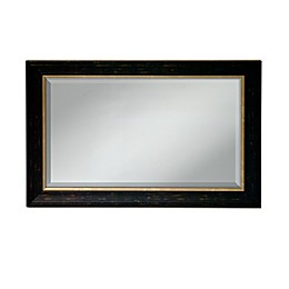 Elsa L 36-Inch by 24-Inch Two-Tone Mirror in Black & Gold