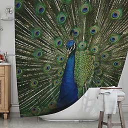 KESS InHousereg Proud Peacock Shower Curtain
