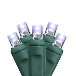 Hub 25.5-Foot 50-Light Commercial Clear Mini Christmas String Lights in Cool White