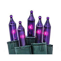 Bethlehem Lighting 50-Light Mini Light Set in Purple