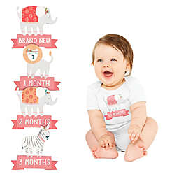 Pearhead® 13-Pack 1st Year Belly Stickers