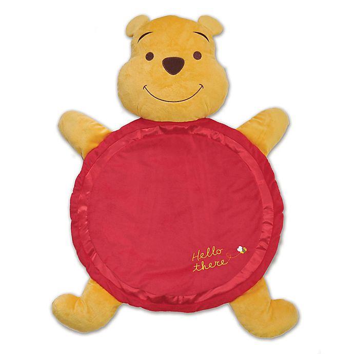 Alternate image 1 for Disney Baby® Winnie the Poo Plush Playmat