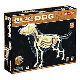 4D Master® 4D Vision Full Skeleton Dog Model