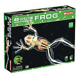 4D Master® 4D Vision Full Skeleton Frog Model
