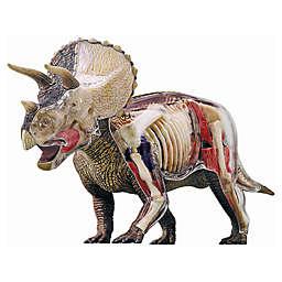 4D Master® 4D Vision Triceratops Anatomy Model