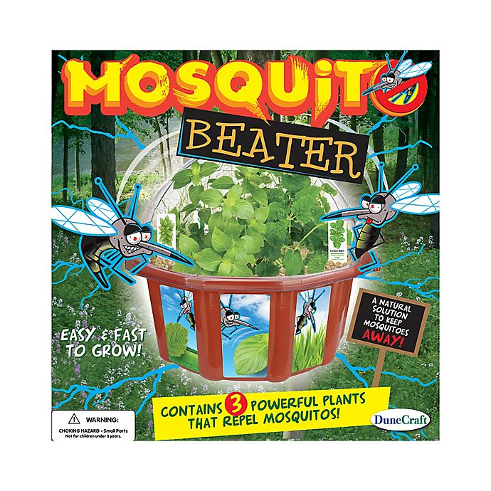 Alternate image 1 for DuneCraft Mosquito Beater Dome Terrarium