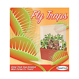 DuneCraft Fly Trap Plant Cube Terrarium