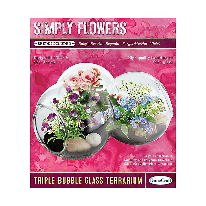 Alternate image 1 for DuneCraft Simply Flowers Triple Bubble Glass Terrarium